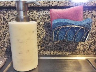 The soap dispenser and sponge holder